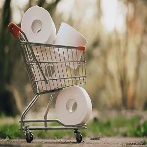 buy toilet tissue online